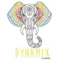 Association - Dynamix