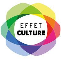 Association - EFFET CULTURE - Institut National de Développement Culturel