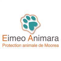 Association - Eimeo Animara