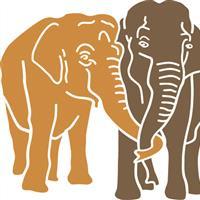 Association - Elephant Haven