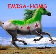 Association - EMISA-HOMS