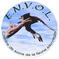 Association - ENVOL