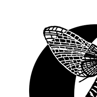 Association - Ephemer'ID