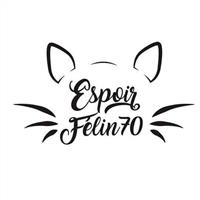 Association - Espoir Felin 70