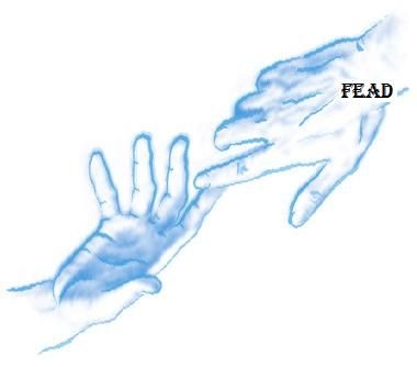 Association - FEAD