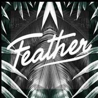 Association - Feather