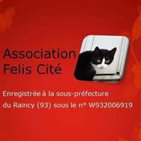 Association - FELIS CITE