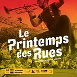 Association Festival Printemps des Rues