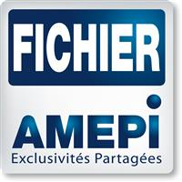 Association Fichier AMEPI