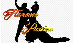 Association - FLAMENCO PASSION