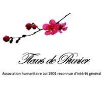 Association - Fleurs de Prunier