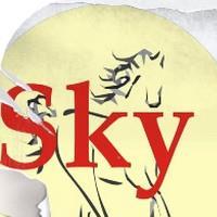 Association - Fondation SKY