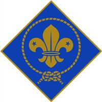 Association - Friends of Scouting in Europe (FOSE) - France