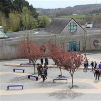 Association - FSE Collège le Verger