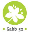 Association - Gabb32