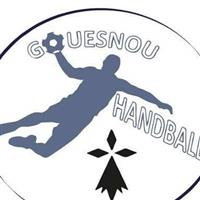 Association Gouesnou Handball