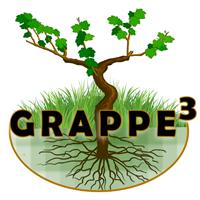 Association - Grappe3