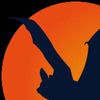 Association - Groupe Chiroptères Pays de la Loire