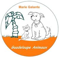 Association Guadeloupe Animaux
