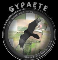 Association - GYPAETE AERIAL ASSOCIATION