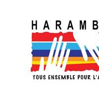 Association - HARAMBEE FRANCE
