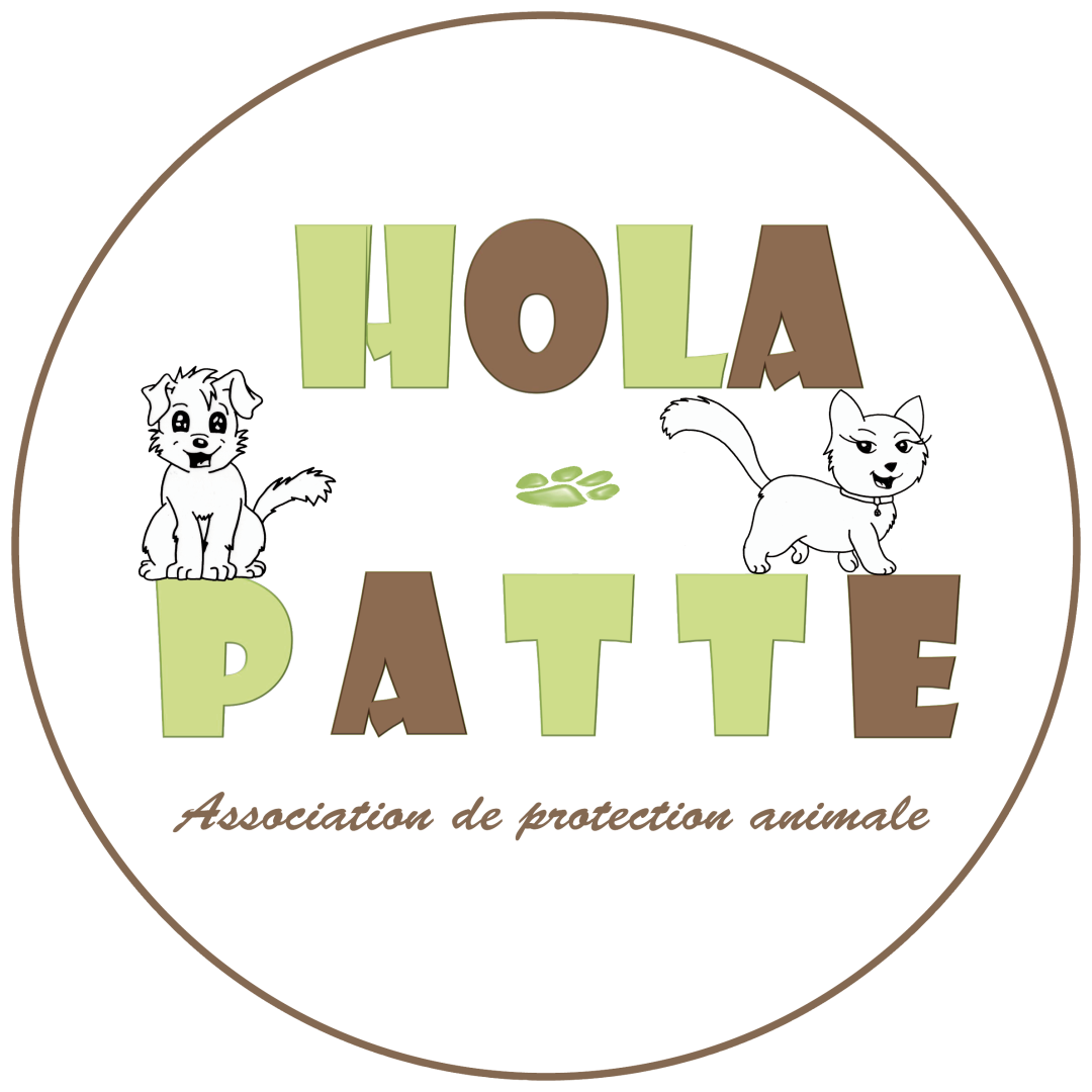 Association HOLA-PATTE