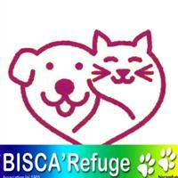 Association - Biscarefuge