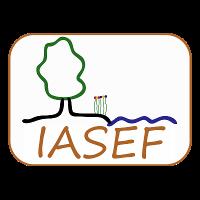 Association - IASEF
