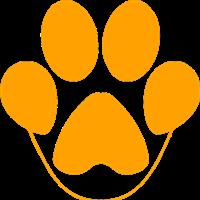 Association - Instant canin