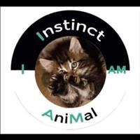 Association Instinct AniMal