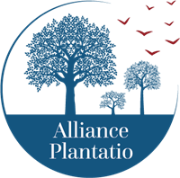 Association Institut Alliance Plantatio