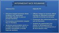 Association INTERMEDIAT NICE ROUMANIE