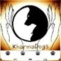 Association - KharmaDogs