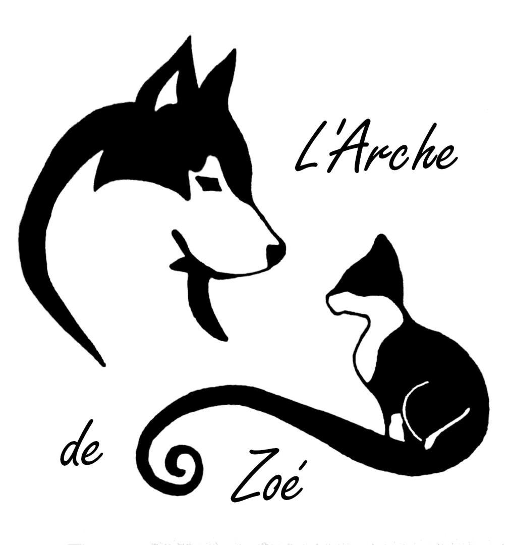 Association - L' Arche de Zoé