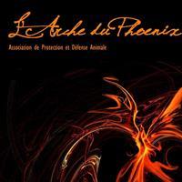 Association - L'Arche du Phoenix