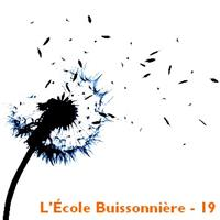 Association - L'École Buissonnière - 19