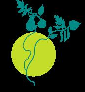 Association - La Légumerie