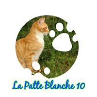 Association - La Patte Blanche 10