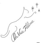 Association - La Voie Féline