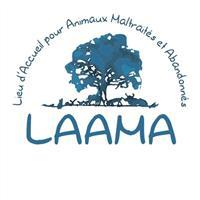 Association - LAAMA