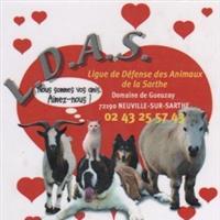 Association - LDAS