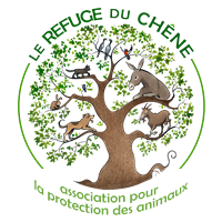 Association - Le Refuge du Chêne