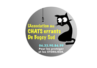 Association Les chats errants de Bugey Sud
