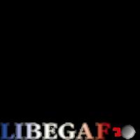 Association - libegaf