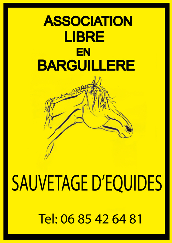 Association - libre en barguillere