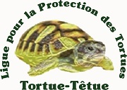 Association - LIGUE POUR LA PROTECTION DES TORTUES - TORTUE TETUE (LPT)