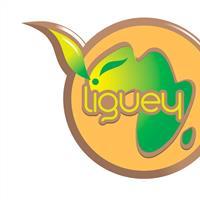 Association - LIGUEY