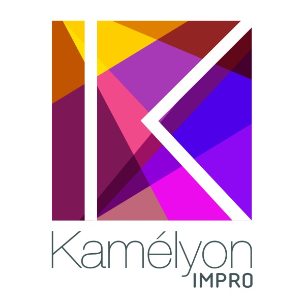 Association - Kamélyon IMPRO