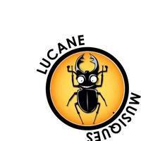 Association - Lucane Musiques