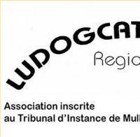 Association - Ludogcat